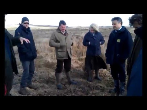 A windy meeting on Molland Moor
