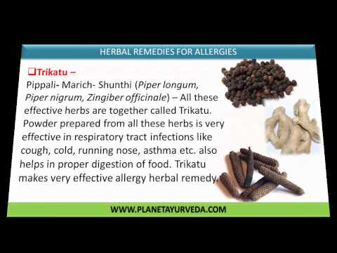 Best Herbal Remedies to Defeat Allergies Naturally
