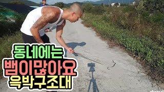윽박::길거리에 뱀이 나타났습니다. 바로 달려가볼게요 (eugbak snake)
