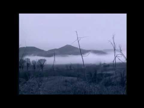 Ванга 2020, слабонервным запрещено! 18+ ужас