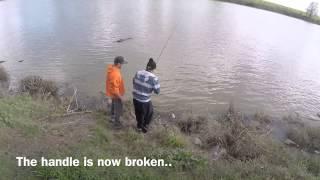 sturgeon fishing sac river
