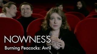 "Burning Peacocks: ' ""Avril"" by Alma Jodorowsky"