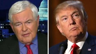 Gingrich  'Moderately optimistic' about passing Trump's plan