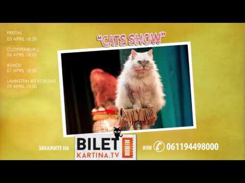 театр куклачева cats-шоу продолжительность