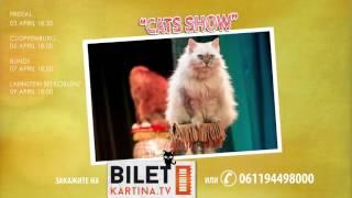Театр кошек Куклачева «Сats-шоу» в Германии