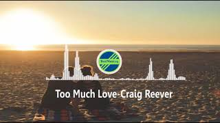 Too Much Love-Craig Reever featWillow [2010s Pop Music]