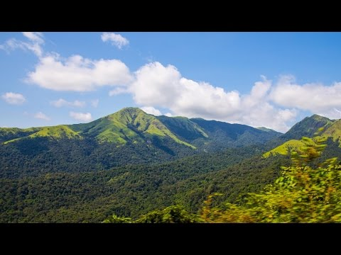 Western Ghats - Nature