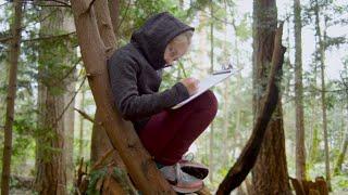 British Columbia's K-12 Curriculum Transformation