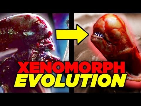 Alien Covenant ENDING EXPLAINED - Xenomorph Evolution?