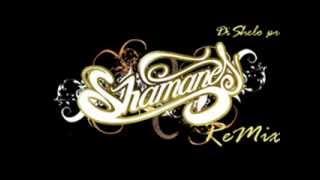Shamanes crew remix 2013-DiShelo