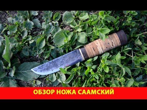 Обзор ножа Саамский. Котята на озере Кошкино подросли.