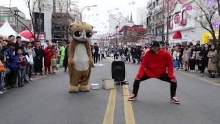 JHKTV]명물고양이댄스와디오비 special cat k pop dance &dob (양성렬 )yang sung yeol boombayah 붐바야