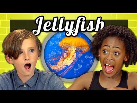 KIDS vs. FOOD #18 - JELLYFISH