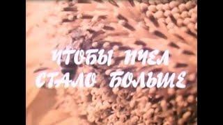 Чтобы пчел стало больше  УК ВГИК 1982 год