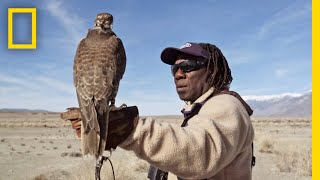 Hunting With Falcons: How One City Man Found His Calling in the Wild | Short Film Showcase
