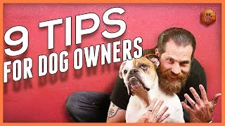 9 Tips for Living With a Dog - Foundations for Dog Owners