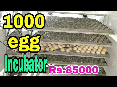 1000 Egg Automatic Incubator