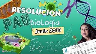 Resolución PAU - Selectividad Andalucía Junio 2018 - Bio[ESO]sfera