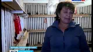 Реабилитанты приюта Надежда восстанавливают заброшенное село Серышевского района
