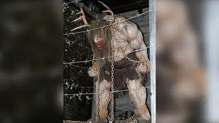 Extraña Criatura Humanoide Captada en Bosque | La Leyenda del WENDIGO