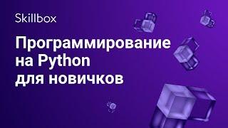 Программирование на Python для новичков