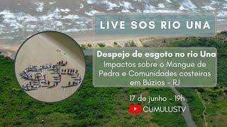 SOS Rio Una - Impactos sobre o Mangue de Pedra em Búzios/RJ
