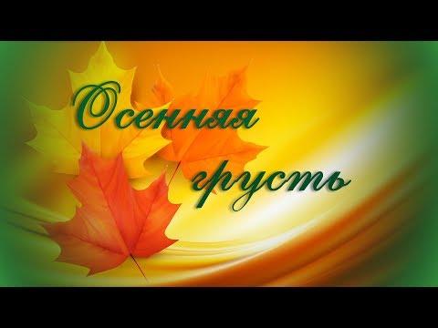 эротическое шоу: ЭРОТИК ЛАЙТ ШОУ - стриптиз шоу программа