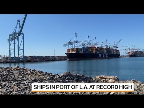 Port of L.A. Director Says More Federal Funding Needed for West Coast