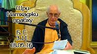 Бхагавад Гита 3.11 - Шри Натхаджи прабху
