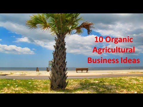 10 Organic Agricultural Business Ideas