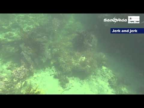 Metaljig Revolution! Shore jigging [SeaRide] by BlueBlue