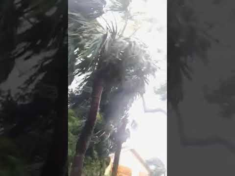 Hurricane Irma Pembroke Pines in 96th Avenue behind the police station
