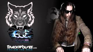 Tommie Sunshine - Live Electric Daisy Carnival (Vegas) - 22.06.2013