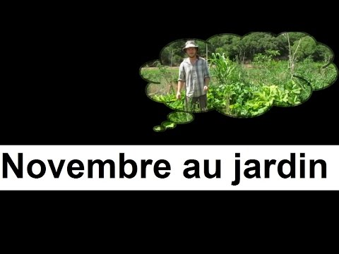 que faire au jardin en novembre youtube. Black Bedroom Furniture Sets. Home Design Ideas