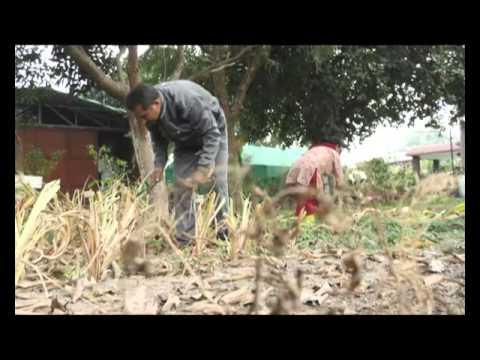 कदमो में आसमां | Kadmo Mein Aasman - Episode - 24 (Part - 1)