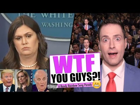 WTF, YOU GUYS!? - Randy Rainbow Song Parody (NSFW)