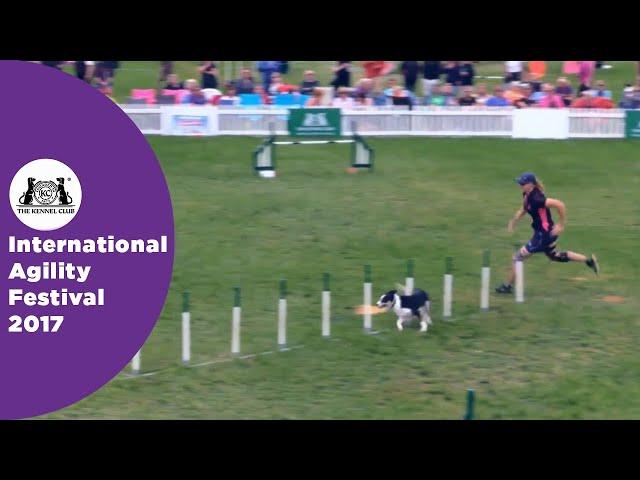 Olympia Quarter Final Large - G3-5 Novice - Part 4 | International Agility Festival 2017