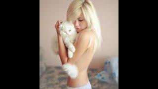 Смешные картинки про кошек и котят Выпуск № 29 FUNNY CATS СМЕШНЫЕ КОШКИ