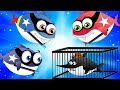 Police Shark Chase Flying Shark | Supershark Squad Cartoon Songs for Kids
