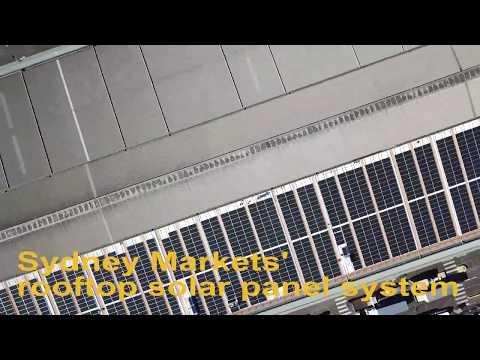 Sydney Markets Solar Panel System