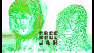 freesoulJAH - Lions and Leopards (Solo Acoustic Version)