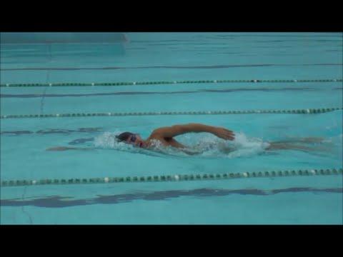 nado crawl tudo sobre diabetes