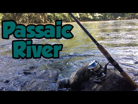 Fishing The Passaic River