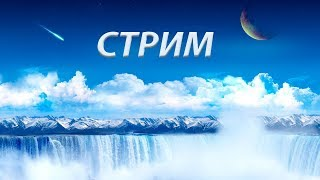 ТУРНИР, ТОЛЬКО С РАНДОМОМ | Стрим Prime World