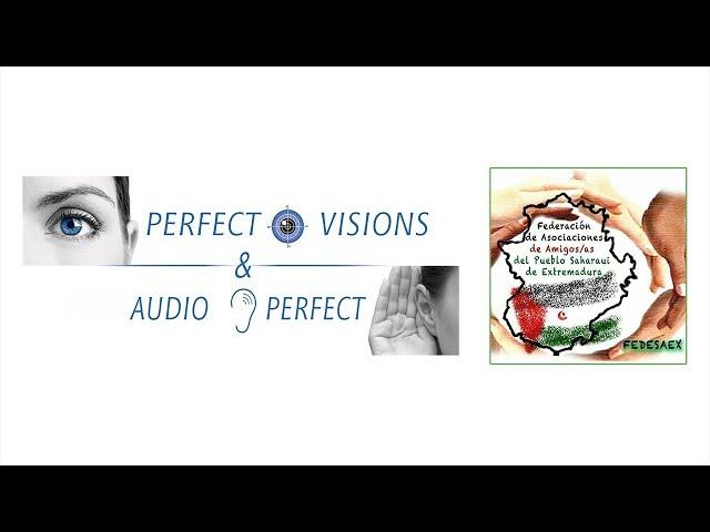 "Perfect Visions & AudioPerfect - Campaña Solidaria ""A través de tus ojos"""