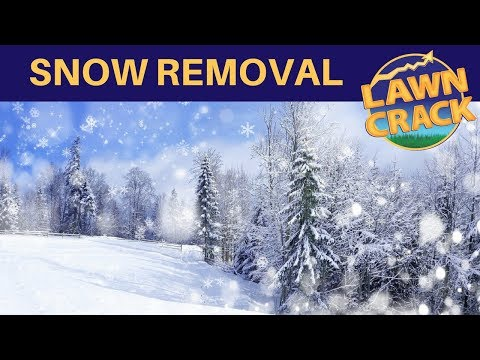 Snow Removal Pricing Tips ❄❄❄ | How To Profit From Snow Removal Services