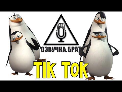Озвучка Пингвины Мадагаскара, брат: Tik Tok