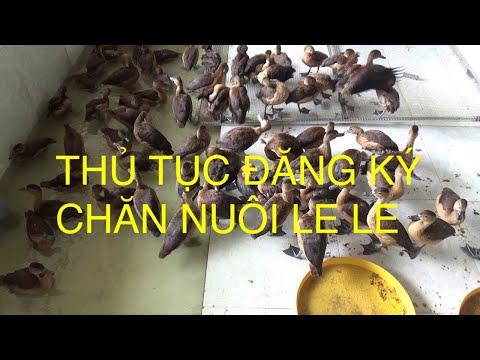 Trình Tự Thủ Tục đăng Ký Chăn Nuôi Le Le .Liên Hệ: 0949.394979.