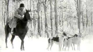 Охота на волка в России 1910 / Wolf hunting in Russia (Eng subs)