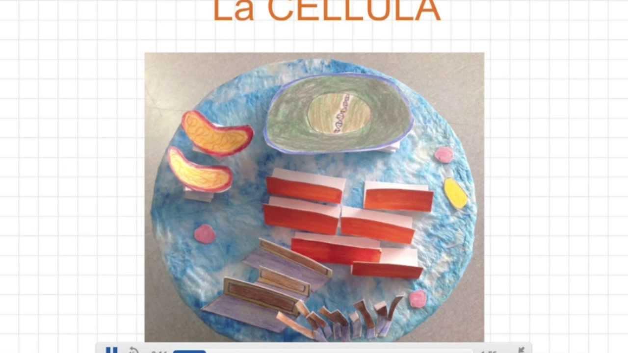 Célèbre La cellula in sintesi - YouTube RM52